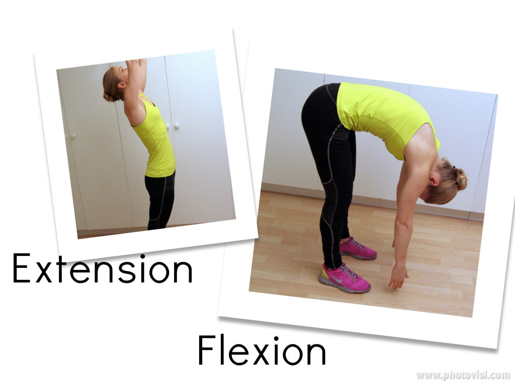 Extension flexion